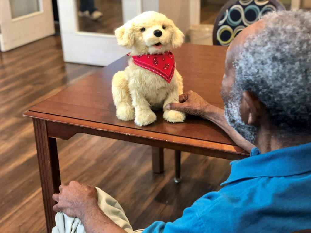 Residents enjoy interacting with robotic companion pets and therapy animals at Chatham Commons